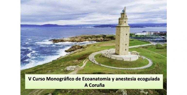 V Curso Monográfico de Ecoanatomía y anestesia ecoguiada